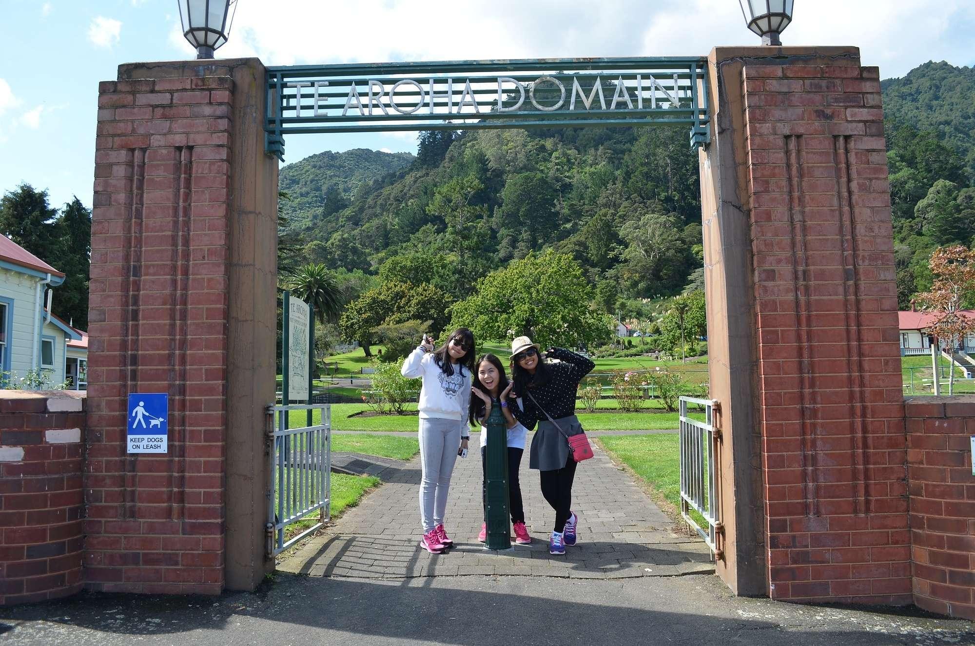 International  •  Te Aroha College
