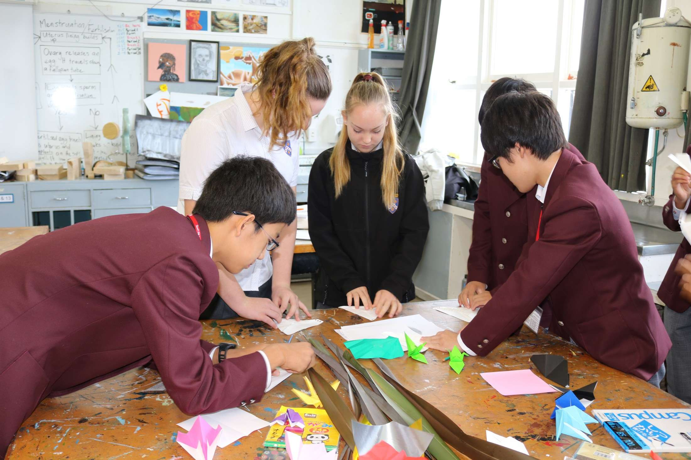 Photos July 2017 - Gallery - International  -  Te Aroha College
